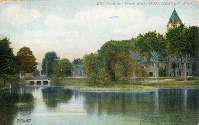 Mill Pond & Town Hall Postcard