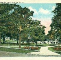 TownCommon Postcard