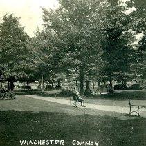 WinchesterCommon 2